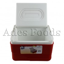 Cooler Insulated Box 6Ltrs
